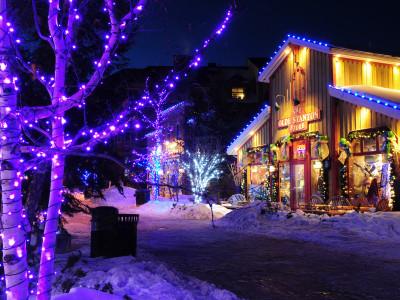 Resort/Commercial Lighting