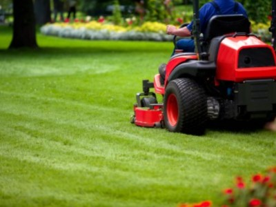 Commercial Lawn Maintenance