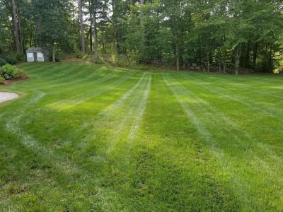 Lawn cut (Boxford, MA)