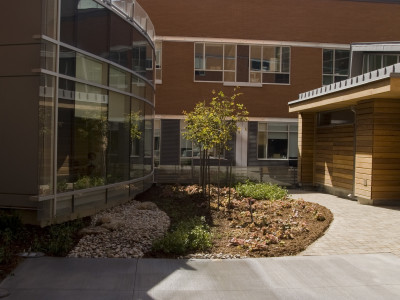Peterborough Hospital Courtyard