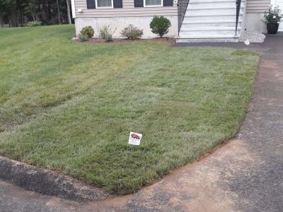Completed - Sod job (Billerica, MA)