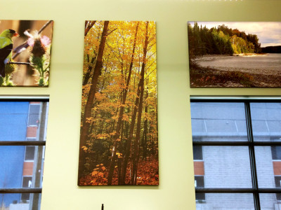 "1.5"" canvas gallery wraps."