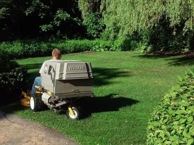 Lawn cut (Wakefield, MA)