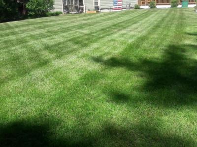 Lawn cut (North Reading, MA)