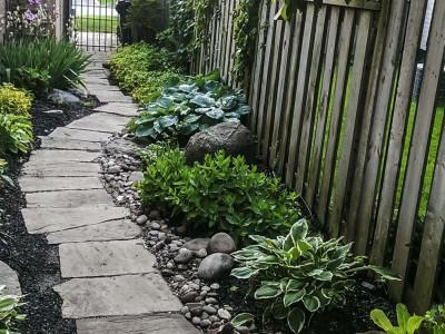 Shade garden pathway
