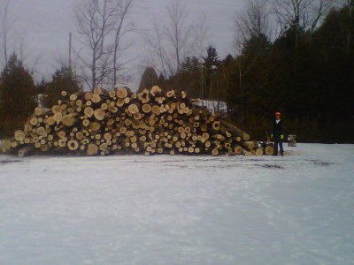 Load of Hardwood Logs