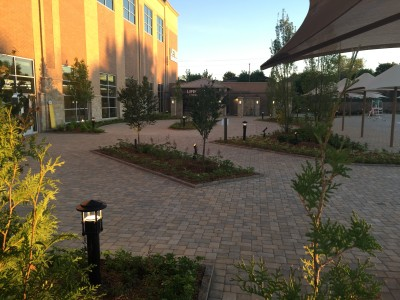 Lifetime Fitness Bistro area planted and ready to go!