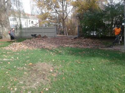 Fall cleanups (Burlington, MA)
