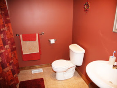 BEFORE: Bathroom Redesign We had to work around the existing flooring, tub, pedestal sink and light fixtures