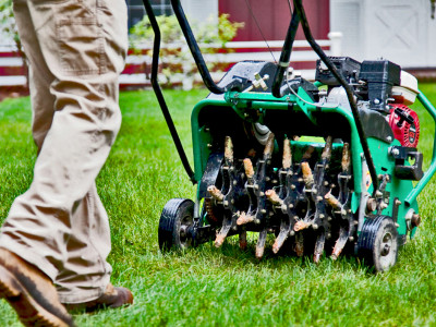 Lawn Repairs and Conditioning