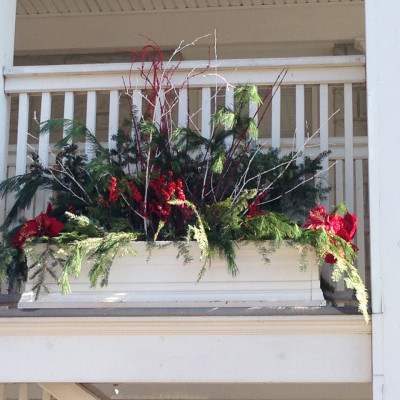 Fresh Greens Window Box