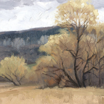 November Willow 9X12 | oil on panel  |  SOLD