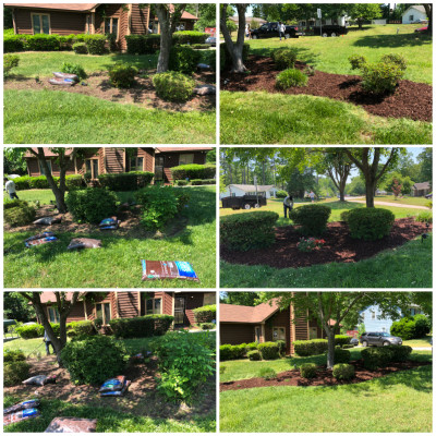 Planting, Trimming, Mulch