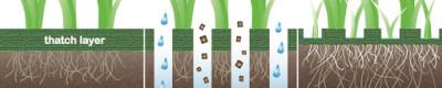 Lawn Core Aeration