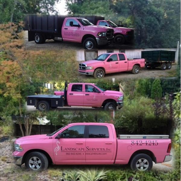 Part of Our Pink Fleet