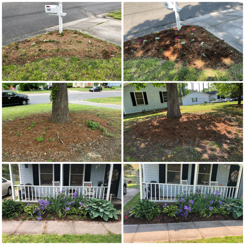 Weeds on flower bed before/after