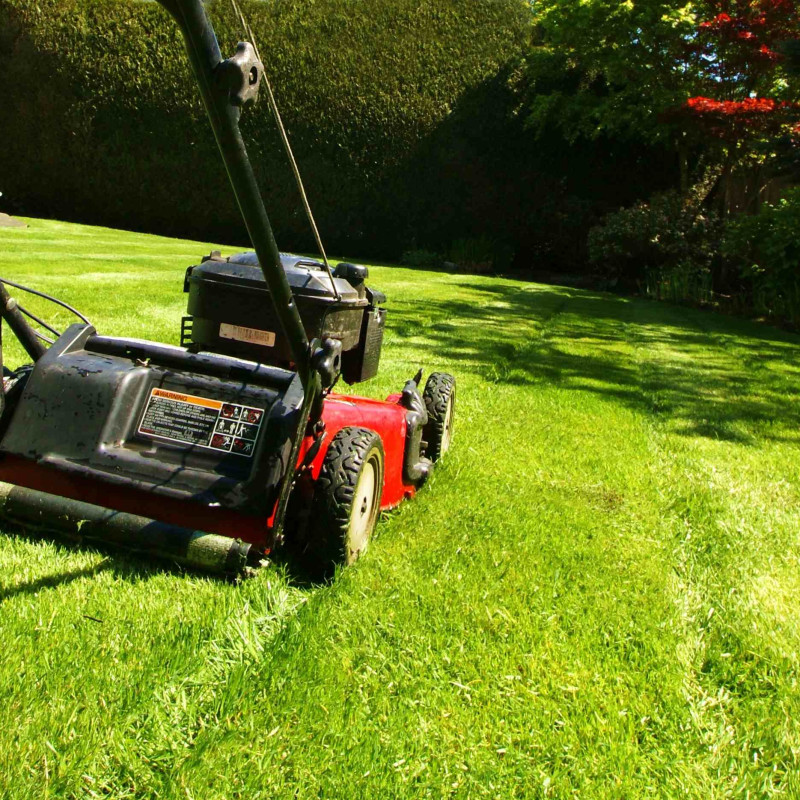 Mowing.