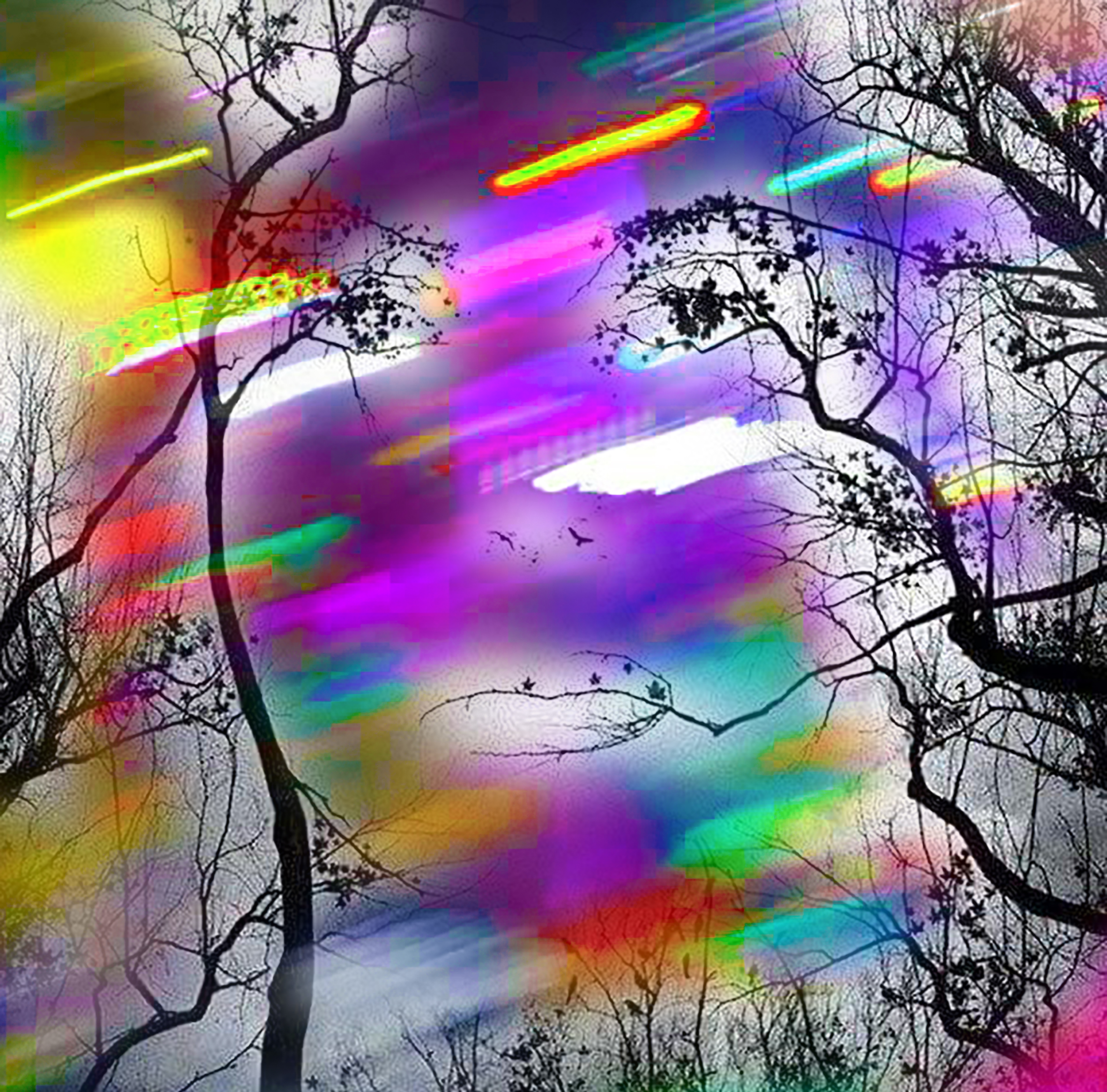 Nature-Face-Colors-Trees