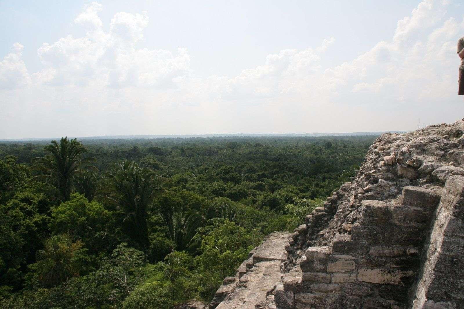 Belice. Las ruinas de Lamanai