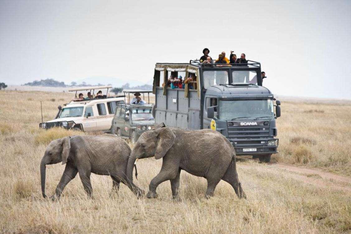 De safari por Kenia y Tanzania, en viaje organizado