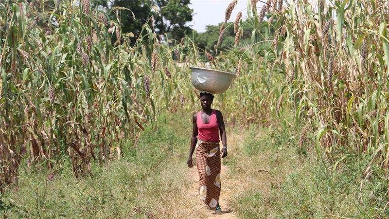 De puntillas por Burkina Faso