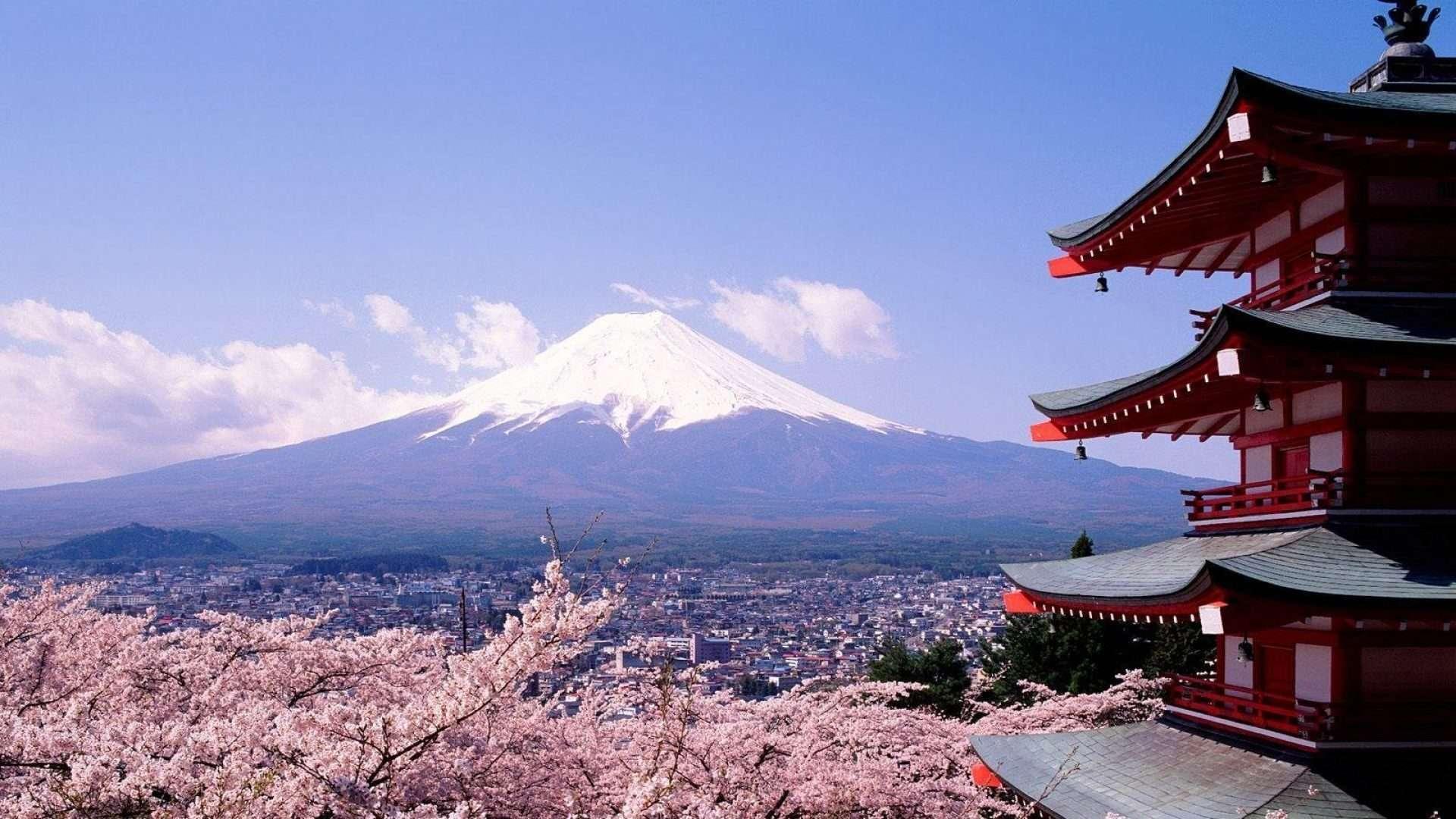 Dónde alojarse en Tokio: las mejores zonas para dormir