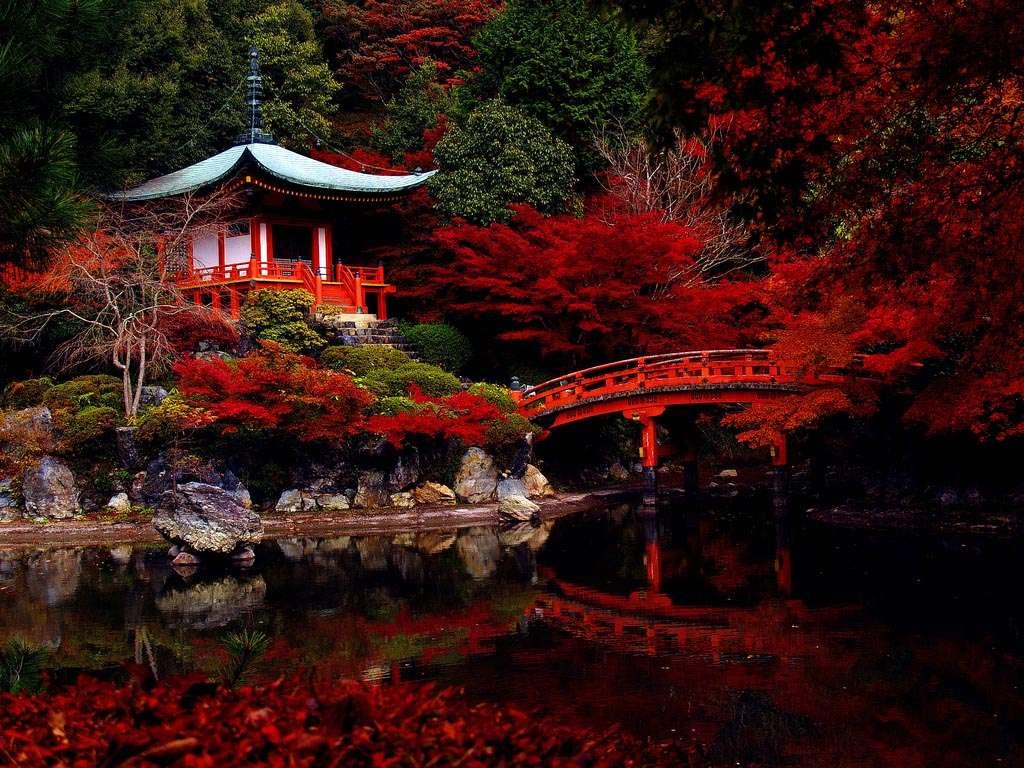 18 experiencias que no te pueden faltar en Japón