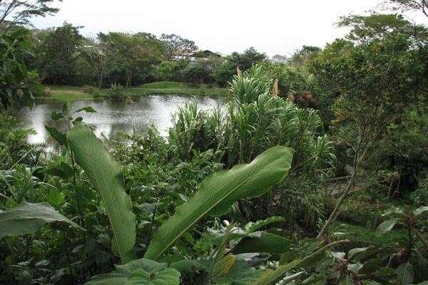 INBioparque: un buen punto para iniciar tu visita a Costa Rica