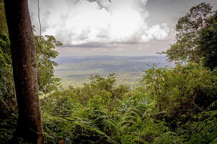 Visita a la ciudad amazónica de Tena