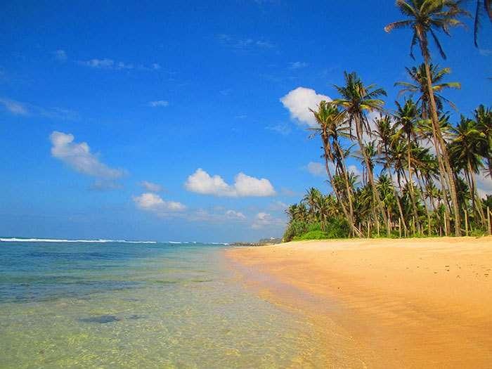 4 meses viviendo en Sri Lanka