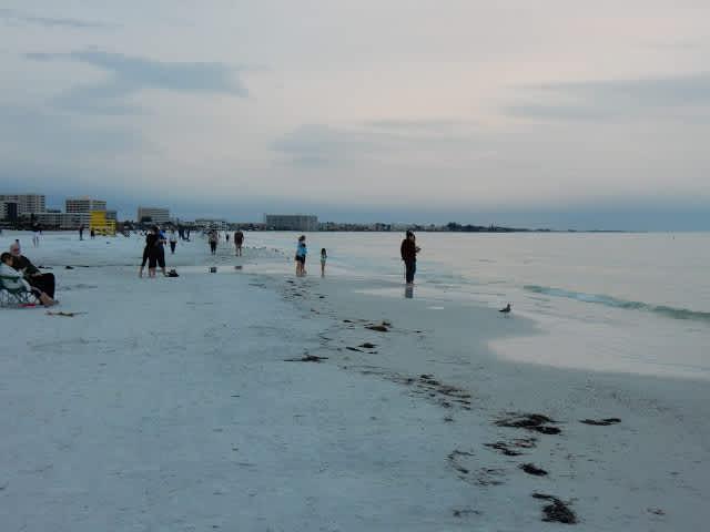 ¿Cómo no enamorarse de Sarasota?