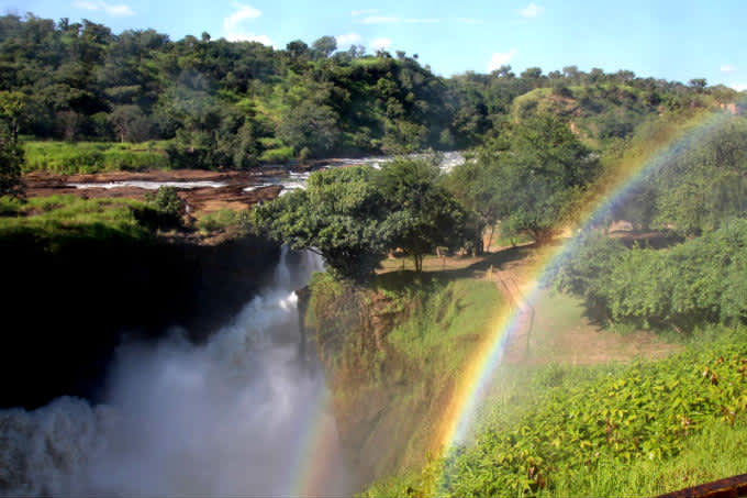 Cataratas y Safari en Murchison Falls NP