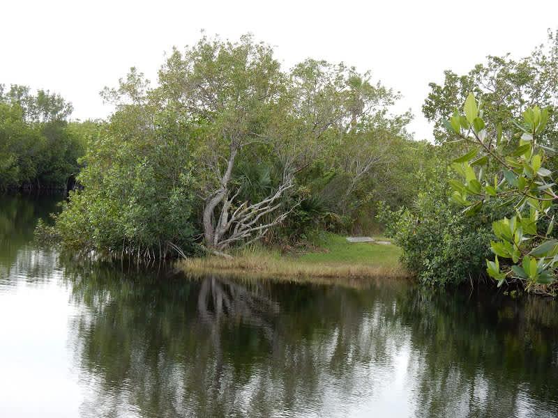 Parque Nacional de los Everglades, el corazón de Florida