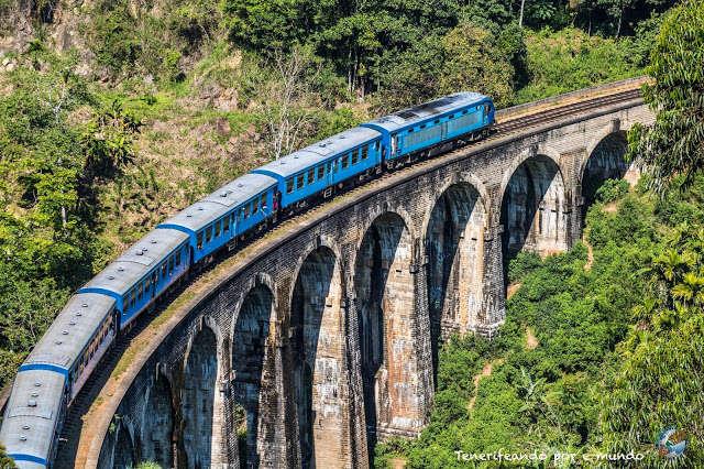 Tren del té y Safari en Yala (Sri Lanka)