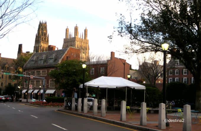 Tu a Harvard y yo a Yale