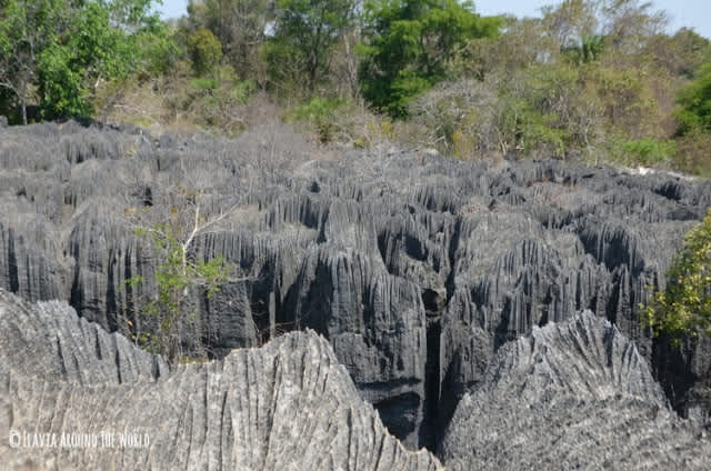 El Parque Nacional Tsingy de Bemaraha en Madagascar