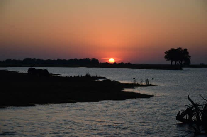 Qué ver en el Parque Nacional de Chobe en Botswana