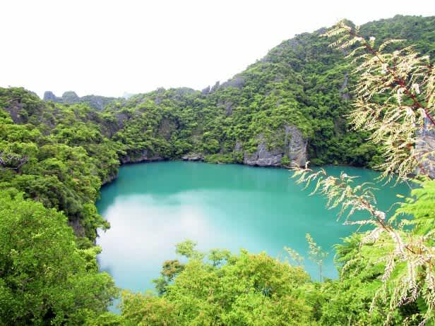 El paraíso tailandés de Mu Ko Ang Thong National Park: muchas islas, pocas películas y un mono.