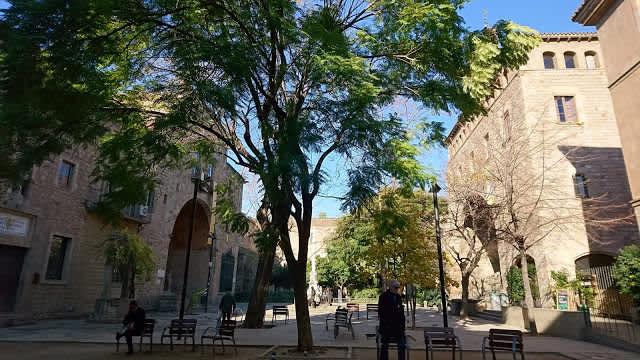 Hospital de la Santa Creu y el anfiteatro anatomico, una joya del Raval