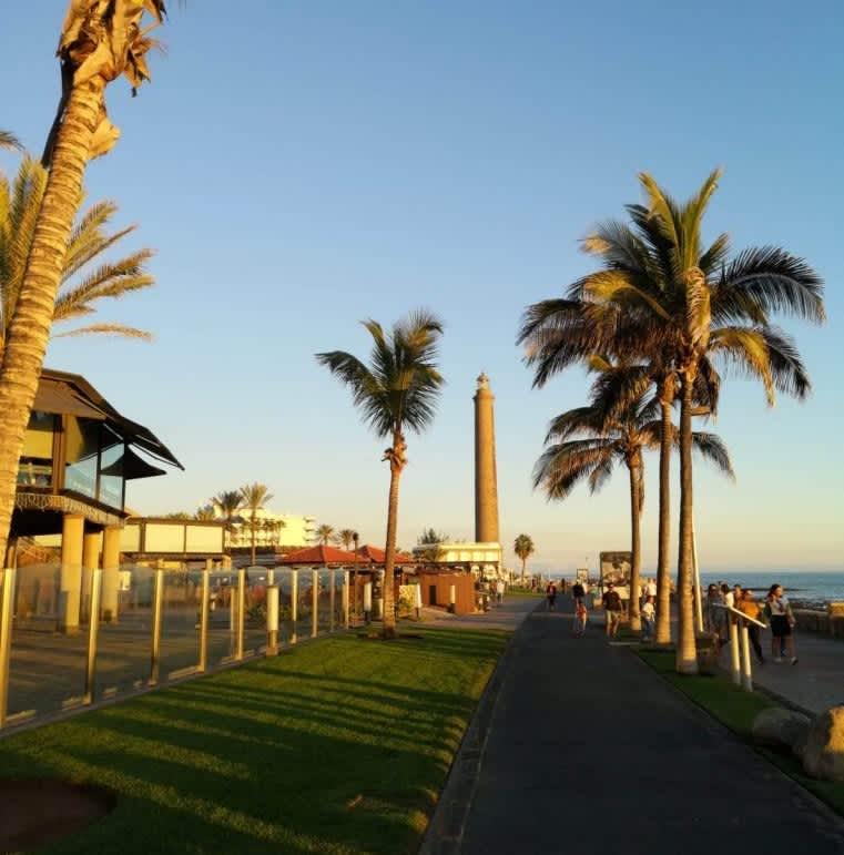 Qué ver y hacer en Gran Canaria