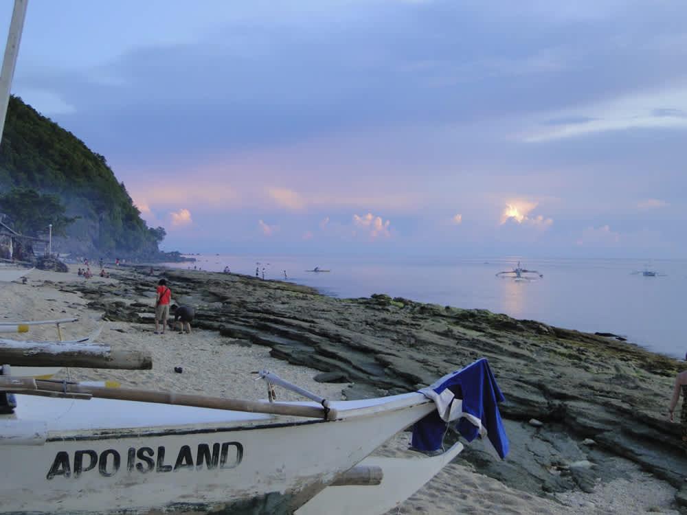 Apo Island, tortugas y arrecife de colores en Filipinas