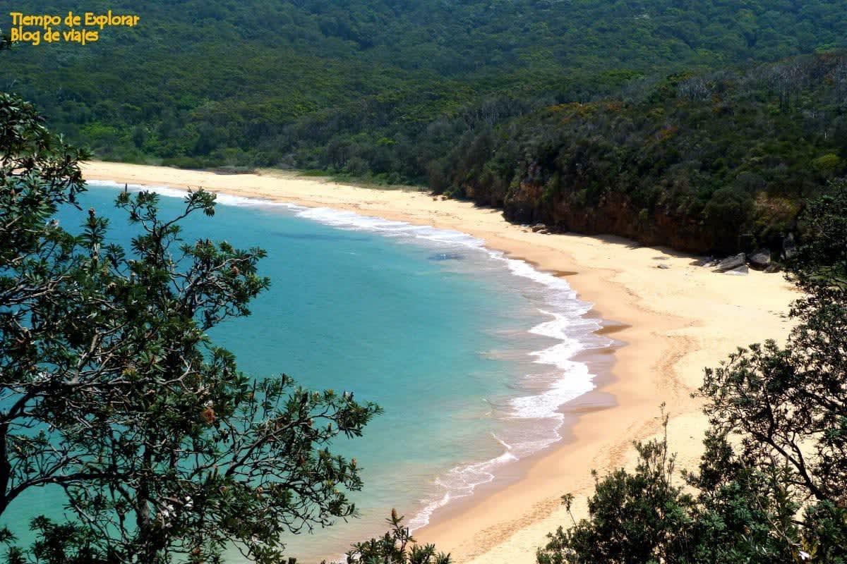 Visitar Bouddi National Park (Escapadas cerca de Sydney)