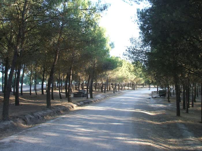 Viajes coquitos y Dehesa de Santa Fe Granada