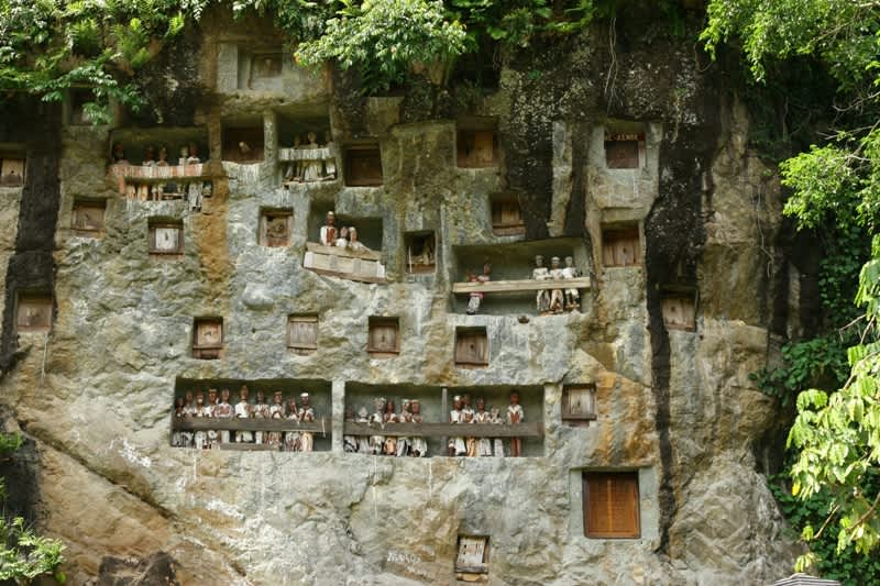 Los Toraja ¿quiénes son y por qué son conocidos?