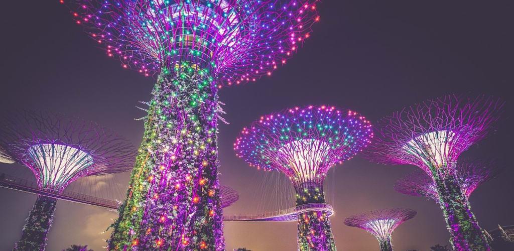 worldpackers en Singapur