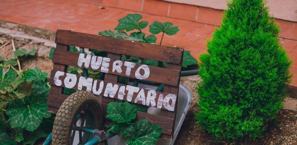 Como foi minha experiência voluntariando no Centro Cultural EnriquezArte