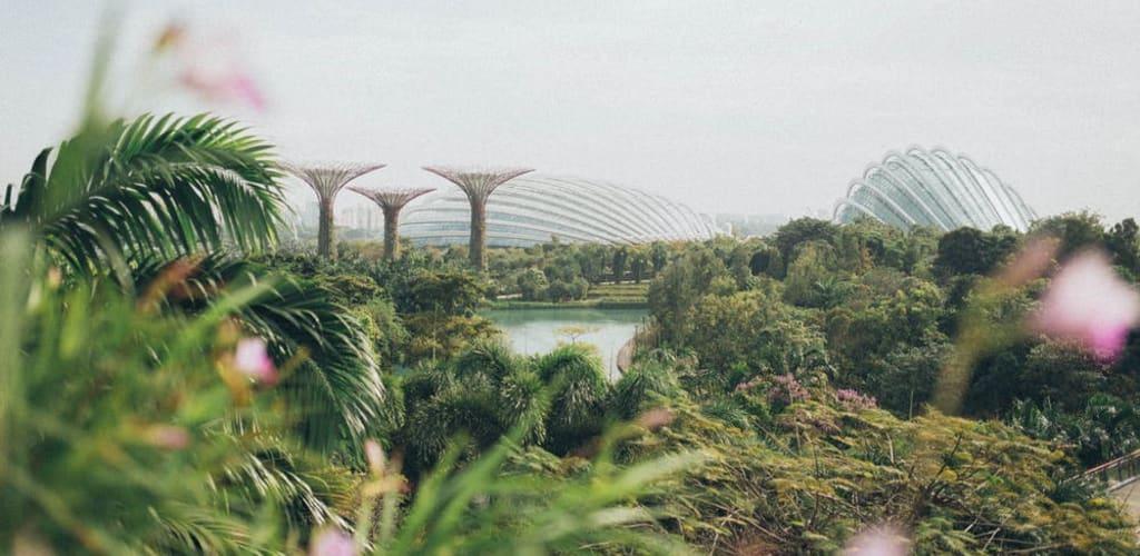 mega-guia-para-viajar-a-singapur