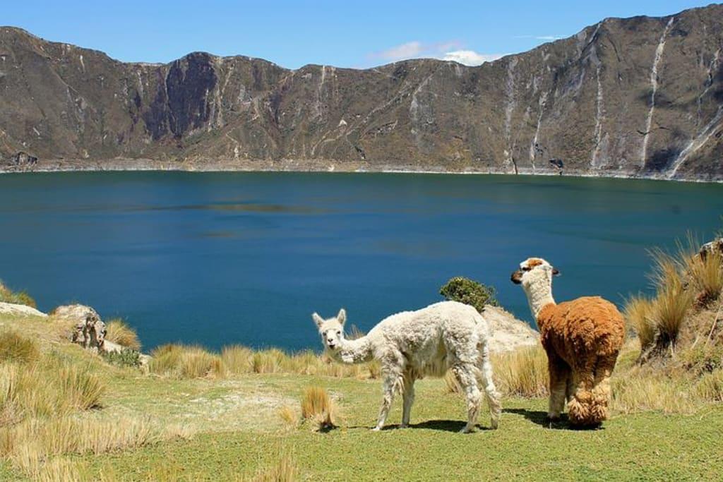 los-paises-mas-baratos-de-sudamerica-para-viajar