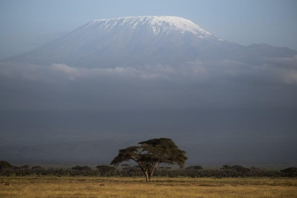 Monte Kilimanjaro desde el Parque Nacional de Amboseli