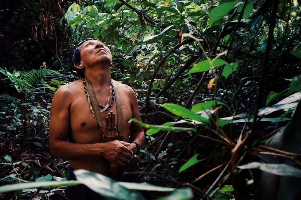 original indigenous people of the Amazon Rainforest